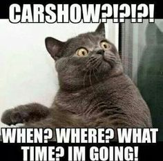 Did someone say Carshow? https://plus.google.com/+JohnPruittMotorCompanyMurrayville/posts