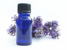 Anti-puces à la lavande pour chiens et chats      Parfumez votre chien ou votre chat avec de l'huile de lavande pour éloigner les puces, qui détestent cette odeur.