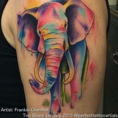 elephant watercolor frankie oneshot