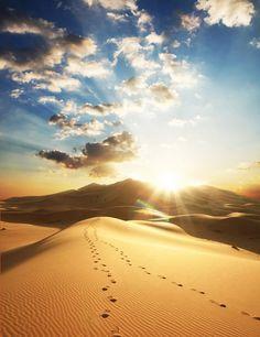 desert4.jpg (400×519)