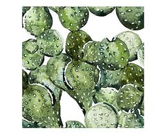 "Dekoracja ścienna ""Cactus Field"""