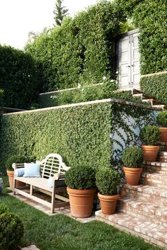 Hollywood Hills Garden - Mark D. Sikes - pots on steps