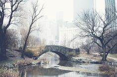 https://flic.kr/p/qnmUbv | New York | www.rebeccadalephotography.com