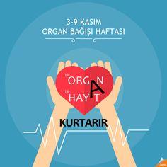 3-9 KASIM ORGAN BAĞIŞI HAFTASI ORGAN BAĞIŞLA HAYAT KURTAR #Qapel #OrganBağış #HayatKurtar