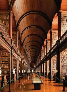 The Long Room at Trinity College. I could live here!