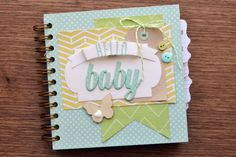 We R Cinch Baby Book by Aly Dosdall_cover