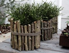 25 Cheap And Easy DIY Home And Garden Projects Using Sticks And Twigs – MyKingLi… – front yard fence ideas Diy Garden Projects, Garden Crafts, Garden Art, Home And Garden, Rustic Gardens, Outdoor Gardens, Twig Crafts, Stick Crafts, Deco Nature