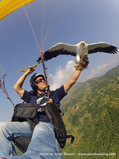 Parahawking in Nepal - Solo with Bob