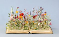 """pagewoman:  """" Wild Flowers  by Sue Blackwell  """""""