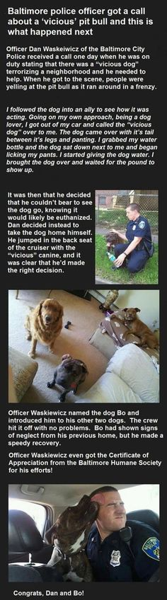 Faith In Humanity Restored - 15 images