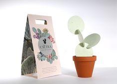 Sustainable Packaging Brand Packaging, Packaging Design, Cactus Pictures, Paper Cactus, Diy Paper Bag, Plant Logos, Llama Gifts, Cactus Painting, Mini Cactus