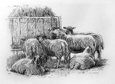 Visit the post for more. Sheep, Snow, Drawings, Painting, Outdoor, Art, Animaux, Paint, Outdoors