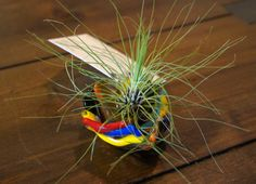 Fused Glass Airplant Terrarium by Airplantcompany on Etsy, $30.00