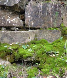 Langhe stone
