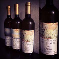 """""""Il prodotto agricolo è un fiore che sbocca dall'incontro d'amore tra la creatività della Natura e quella dell'uomo""""  Stefano Bellotti, la Cascina degli ulivi. www.gliortidelbelvedere.it Telefono 02-49781425 Etiquette, Red Wine, Alcoholic Drinks, Bottle, Glass, Drinkware, Flask, Corning Glass, Liquor Drinks"""