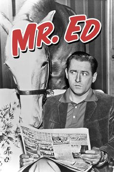 Mister Ed - a old tv show about a talking horse Childhood Tv Shows, My Childhood Memories, Best Memories, Easy Listening, Mister Ed, Old Shows, Great Tv Shows, Tv Episodes, Vintage Movies