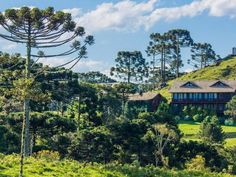 Feed your inner adrenaline junkie in the highlands or get a taste of the finer things in Gramado. There's a little something surprising for everyone in Rio Grande do Sul.