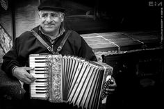 Fisarmonica / Accordion - La fisarmonica stasera suona per noi.. the accordion tonight plays for us..