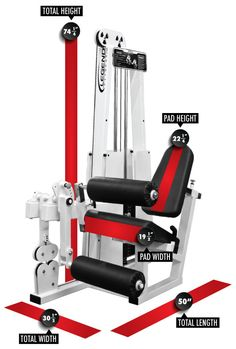 Buyer's Guide on the Legend Fitness 918 Leg Extension / Leg Curl Combo