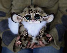 Criaturas fofas - bichinho de pelúcia (1)