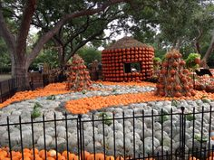 The gardens at the Dallas Arboretum transmorm completely during this time of the year!
