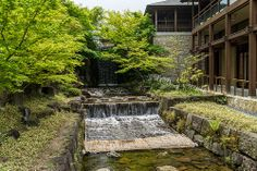Tokugawa Garden, Nagoya Nagoya, Sidewalk, Japan, Explore, Garden, Photos, Pictures, Garten, Gardening