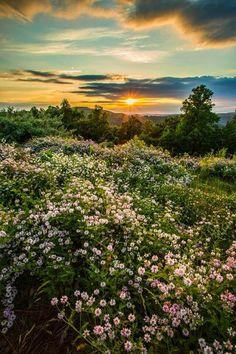 a pretty sunset in wild, wonderful west virginia