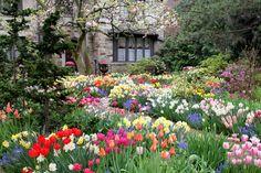 castle garden - spring