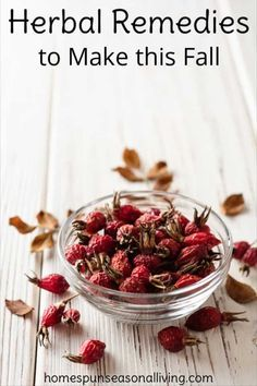 Make these Autumn Herbal Remedies from Roots & Fruits Make these autumn herbal remedies and stock your home apothecary with remedies for cold and flu season, digestive trouble, insomnia, and more. Cold Home Remedies, Natural Health Remedies, Natural Cures, Natural Healing, Herbal Remedies, Natural Foods, Holistic Remedies, Natural Skin, Natural Treatments