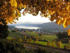 Hotel Restaurant Eichberg, Herbst 2, Seengen, Hallwilersee, Seetal, Aargau, Suisse, Schweiz, Switzerland. www.vch.ch/eichberg/