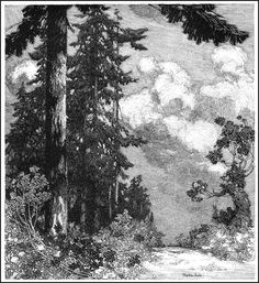 The International Society of Pen and Ink Artists: Franklin Booth