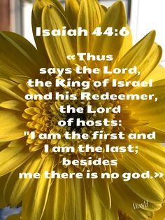 """Thus says the Lord, the King of Israel and his Redeemer, the Lord of hosts: ""I am the first and I am the last; besides me there is no god."" ‭‭Isaiah‬ ‭44:6‬ ‭ESV‬‬"