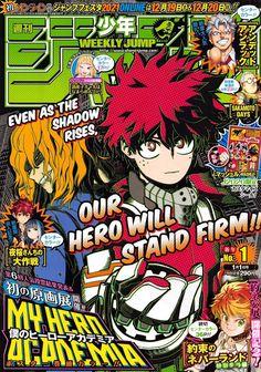 My Hero Academia Manga Cover Art Boku No Hero Academia, My Hero Academia Manga, Neko, Detective, V Jump, Raw Manga, Manga Covers, Awesome Anime, Cover Art