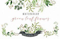 Watercolor Green Leaf Clip Art - Illustrations - 5