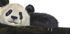 Panda Painting - NingJing Serenity- Ltd Edition Prints Available by Heidi Farrar Panda Painting, Love Painting, Panda Art, Wildlife Art, Print Artist, Drawing S, Serenity, Fine Art Prints, My Arts