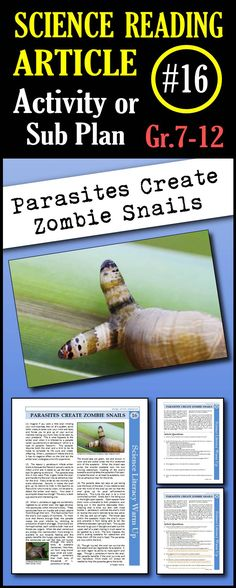 In this article, students will read about the L. paradoxum parasite that infects snails. The parasite takes over the snail's body and mind to turn it into an organism that will attract birds, the parasite's second host. This gruesome tale will enthrall your students. This is a great in class activity, homework assignment, weekly science reading assignment, sub plan or in school suspension plan. Use this to save time looking for engaging and appropriate articles with questions!