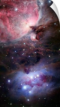 """Robert Gendler – Nebulosas y galaxias Just another world and universe citizen… — """"The sword of orion"""" This image has. Cosmos, Constellations, Ciel Nocturne, Orion Nebula, Constellation Orion, Carina Nebula, Horsehead Nebula, Helix Nebula, Andromeda Galaxy"""