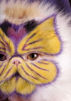 Painted-Cat-cats-17822612-279-400.jpg (279×400)