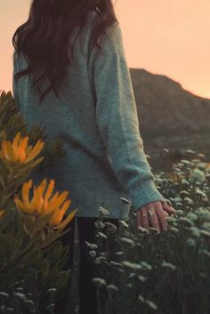 Nature Aesthetic, Aesthetic Movies, Aesthetic Pictures, Video Nature, Nature Gif, Aesthetic Photography Grunge, Animated Love Images, Rain Photography, Beautiful Photos Of Nature