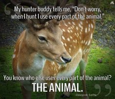 You know who else uses every part of the animal? ....
