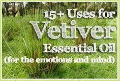 15+ Uses for Vetiver Essential Oil (for the emotions and mind)  I have been using this on my pulse points and sprayed on my favorite throw before bed, and I have been sleeping so calmly and deeply. This stuff is a life-saver!