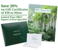 White flower farm gift certificates are the ideal gift for gardeners a gift certificate is the perfect gift for the gardeners on your list white flower farmgift certificates mightylinksfo