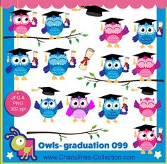 off Graduation Owls clipart, colorful owls images, school clipart, graduation clip art set 099 Graduation Clip Art, Graduation Decorations, Owl Theme Classroom, School Clipart, Animals For Kids, Make And Sell, Owls, Collage, Colorful