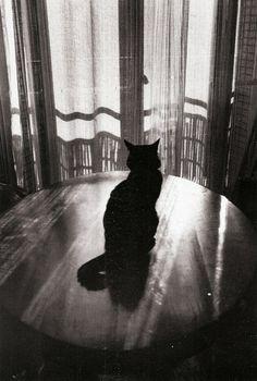 Edouard Boubat - Paris, 1986.