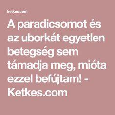 A paradicsomot és az uborkát egyetlen betegség sem támadja meg, mióta ezzel befújtam! - Ketkes.com Gardening, Plant, Lawn And Garden, Urban Homesteading, Horticulture