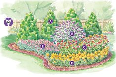 gp-butterfly-friendly-garden Plan