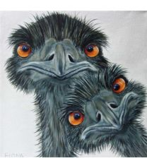 "by Fiona Groom. Óye"" acrylic on canvas… Bird Drawings, Animal Drawings, Funny Birds, Big Bird, Whimsical Art, Pictures To Paint, Bird Art, Animal Paintings, Pet Birds"