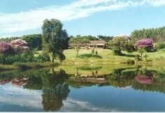 The guest house is set in a beautiful veld with ample spaces for long walks through the green lawns dotted with trees and a river flowing past the guest house is ideal for swimming, fishing and river rafting. Green Lawn, Africa Travel, Rafting, Amazing Nature, Places To Travel, South Africa, River, City, Lawns