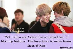 Luhan and Sehun playing games and using Kris as the punishment. Exo Facts, Funny Facts, Chanyeol Baekhyun, Make Funny Faces, Xiuchen, Exo Ot12, Exo Memes, Korean Entertainment, Shinee