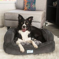 R2PPetLtd. Beautyrest Colossal Rest Orthopedic Memory Foam Medium Dog and Cat Bed Color: Silver Jacquard